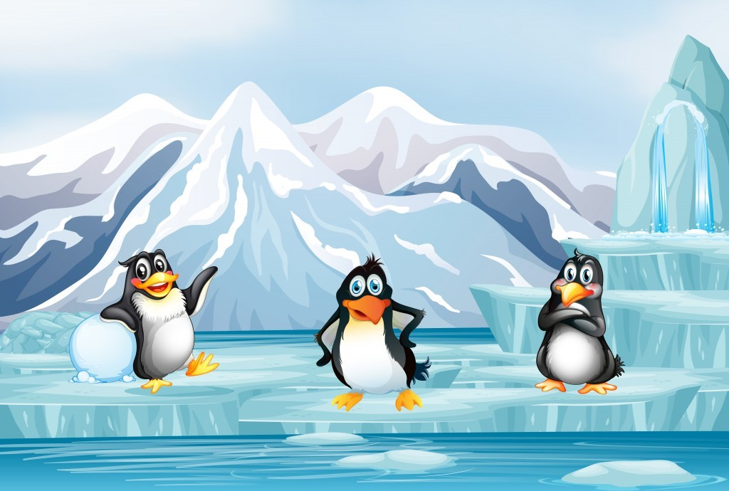 Pingvin módi