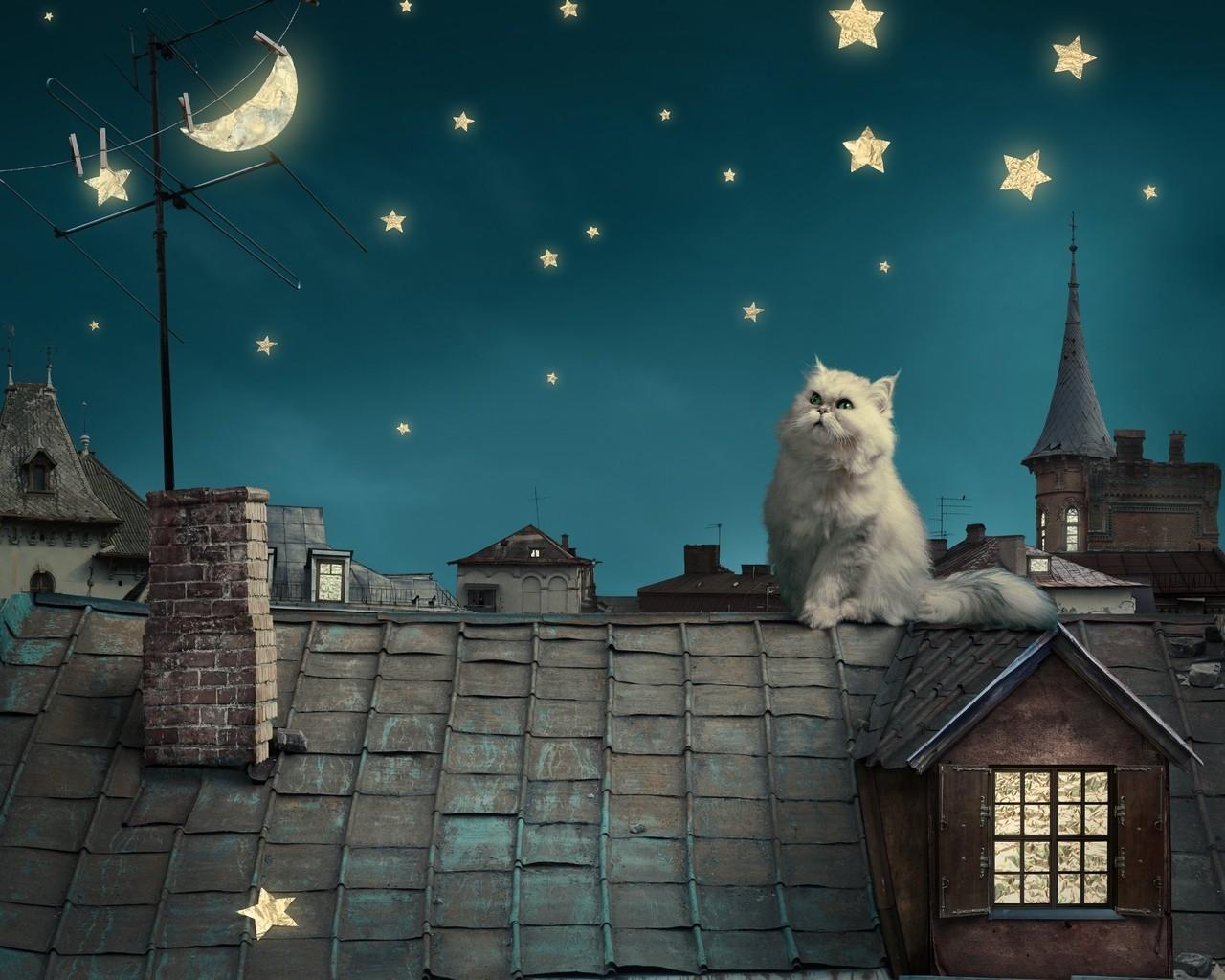 Alfréd és a csillagok
